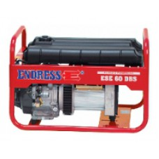 Endress ESE 606 DHS (ESE 60 DBS profi)